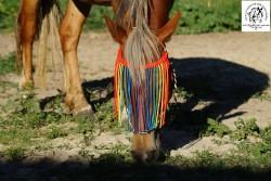 Налобникдля лошади.